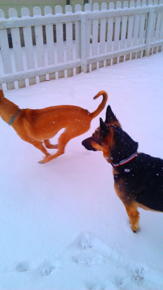 Girls chasing each other in the snow